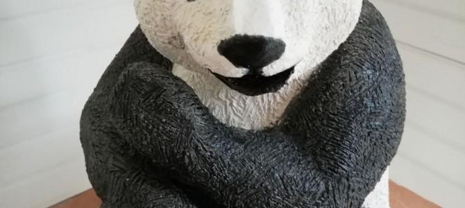Pandi, Panda!